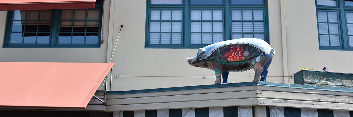 Rachel the Pike Place Market Pig