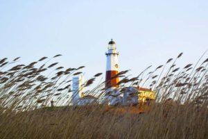 Greater Long Island Psychiatric Society